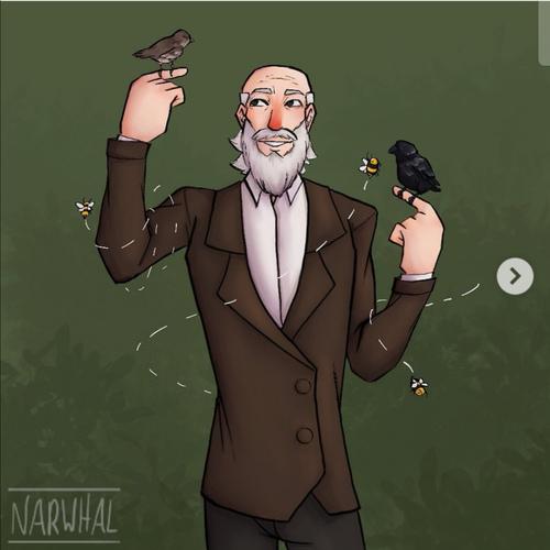 搬运:达尔文和他深爱的小动物们