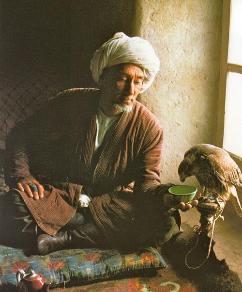 河中与瀚海:阿富汗,中亚诸国以...